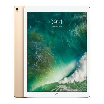 iPad Pro 12.9 Inch Wi Fi Cellular 512GB 2nd Gen Gold